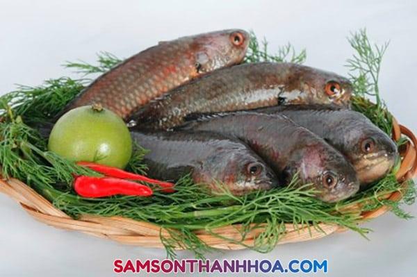 Cá rô đầm sét xứ Thanh