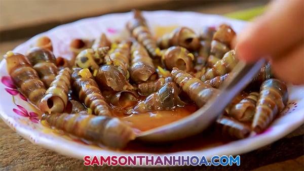 Ốc hút biển Sầm Sơn